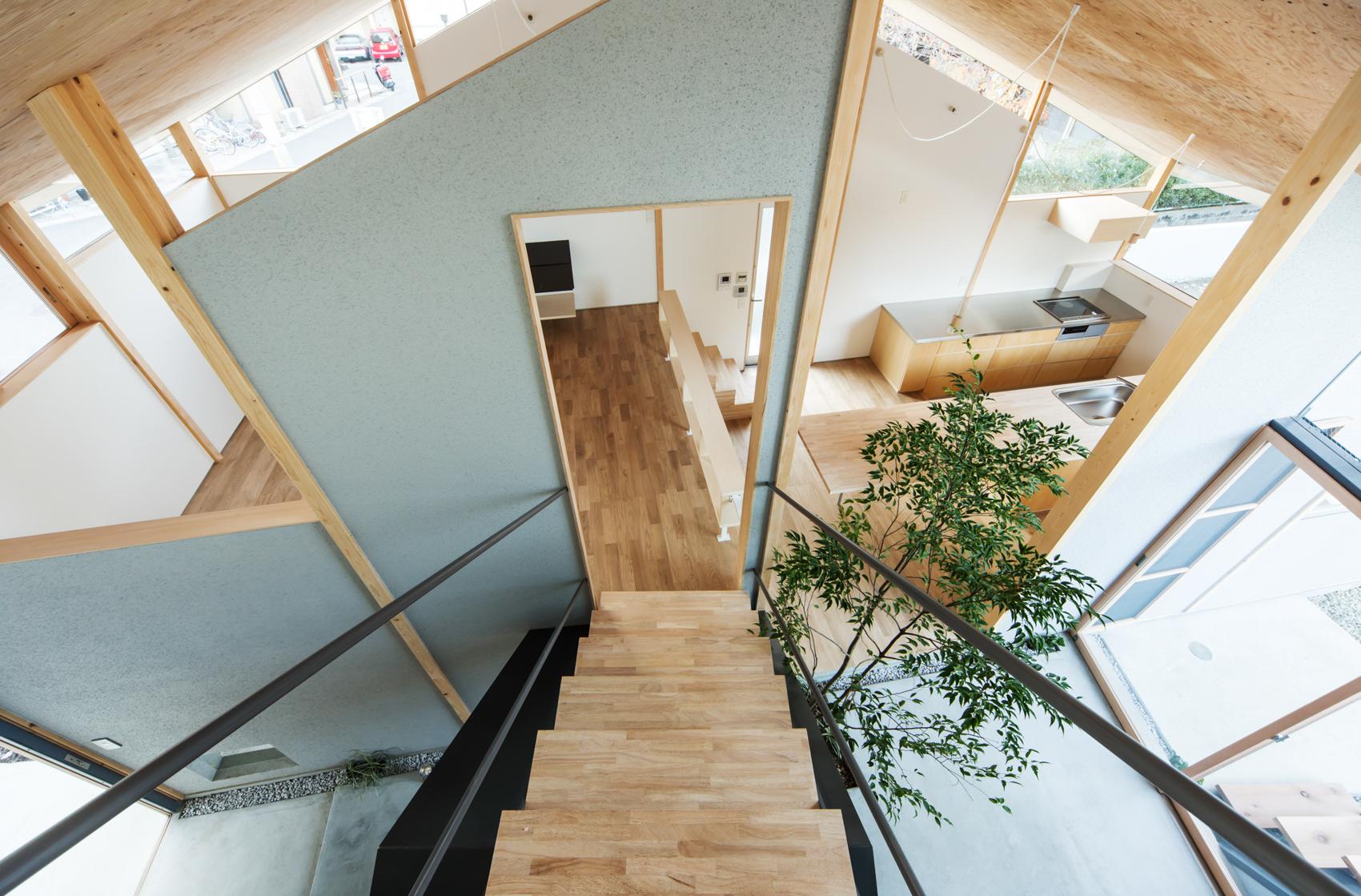設計:y+M design office